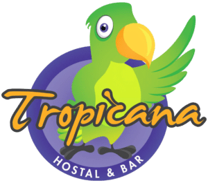 hostel bar tours party antigua guatemala